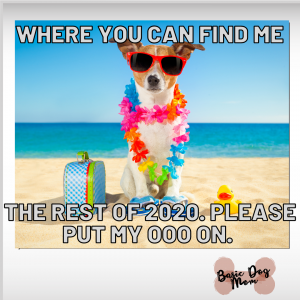 Dog Out of Office for 2020 and at the beach chillin