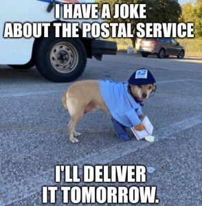 Dog USPS united states postal service mail Halloween Costume Meme - i have a joke about the mail but i'll deliver it tomorrow funny