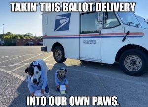 basic dog mom Dog USPS united states postal service mail Halloween Costume Meme - time to take this ballot delivery into our own paws