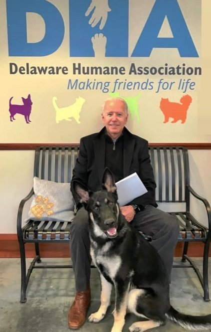 DHA Delaware Human Association Major Biden Adoption Rescue