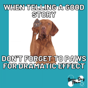 dog raising paw for dramatic [...]