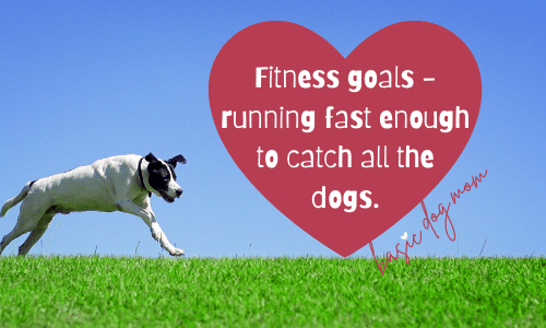 Fitness goals - running fast enough to catch all the dogs.