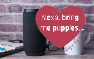 Alexa, bring me puppies.