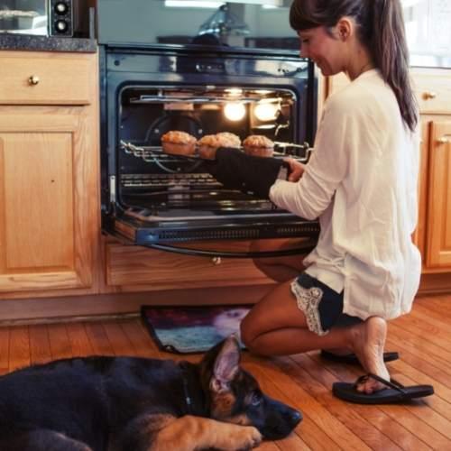 dog mom kitchen