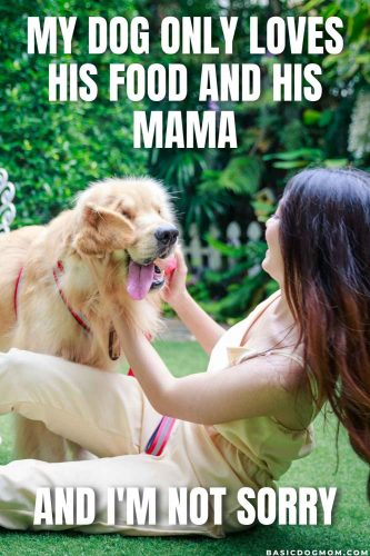 Funny and Cute Dog Mom Meme - My dog only loves his food and his mama and I am not sorry.