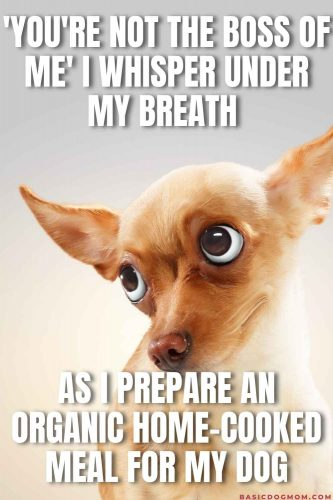 Funny Dog Mom Meme - You're not the boss of me I whisper under my breath as I prepare an organic home cooked meal for my dog.