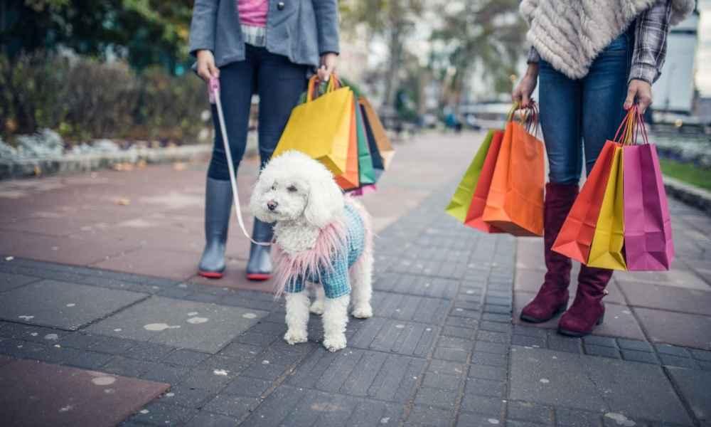 Dog Mom Store