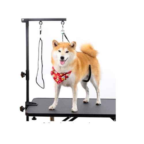 Breeze Touch Dog Grooming Table