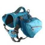 Harness and Hiking Pack for Dogs