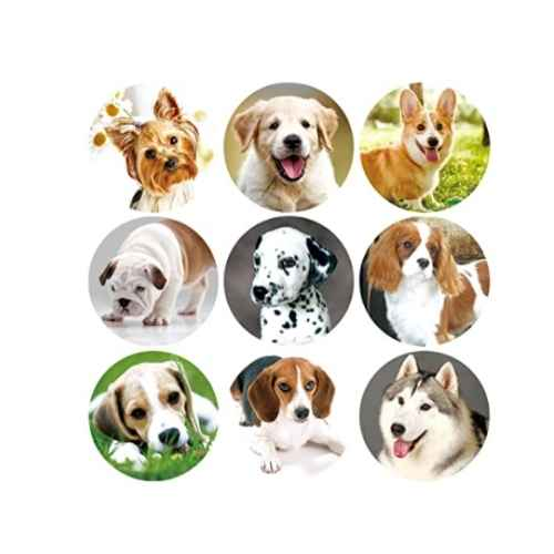 Dog Themed Stickers