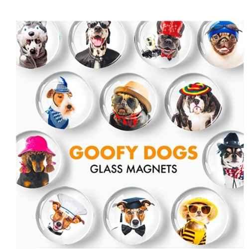 Goofy Dog Magnets