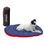 Calming Beanbag Style Dog Bed