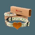 Matching Dog Collar & Dog Mom Friendship Bracelet